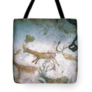 Cave Art Tote Bag