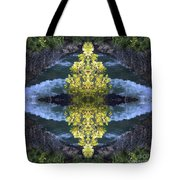 Cave Point  Tote Bag