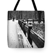 Central Park 8 Tote Bag by Wayne Gill