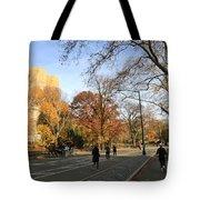Central Park New York City Tote Bag