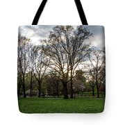 Central Park Views  Tote Bag