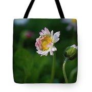 Chamomile Flowers Tote Bag