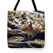 Chipmunk At Heckrodt Tote Bag