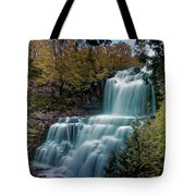 Chittanengo Falls Tote Bag
