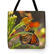 Clinging Butterfly Tote Bag