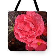 Close-up Of Pink Flowers In Bloom Tote Bag