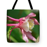Columbine From The Songbird Series Named Robin Tote Bag