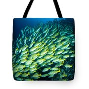 Coral Reef Scene Tote Bag