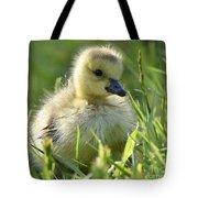 Cute Baby Goose Tote Bag