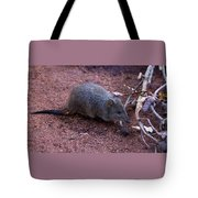 Cute Little One Tote Bag
