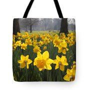 Daffodils In St James Park London Tote Bag