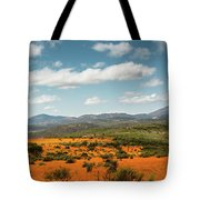 Daisies Blooming In Namaqualand 2 Tote Bag