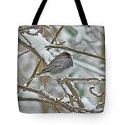 Dark-eyed Junco - Snowbird Tote Bag