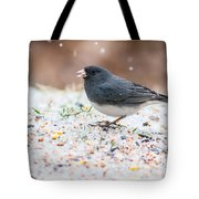 Dark Eyed Junco Tote Bag