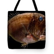 Deep Sea Fangtooth Tote Bag