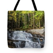 Discovery Falls Tote Bag
