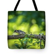 Downy Woodpecker In The Wild Tote Bag