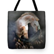 Dream Catcher Tote Bag by Stephanie Laird
