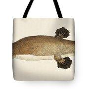 Duck-billed Platypus Ornithorhynchus Tote Bag