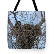 2 Eagles On Nest  3172b  Tote Bag