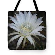 Echinopsis  Tote Bag