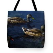 Exotic Birds Of America Ducks In A Pond Tote Bag