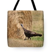Female Eastern Wild Turkey Tote Bag