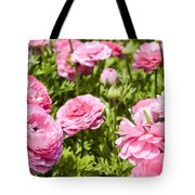 field of cultivated Buttercup  Tote Bag