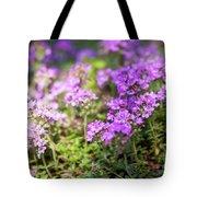 Flowering Thyme Tote Bag
