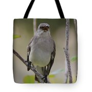 Fly Catcher Tote Bag