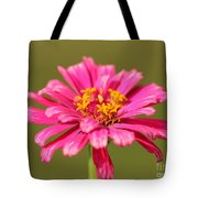 Fuchsia Pink Zinnia From The Whirlygig Mix Tote Bag