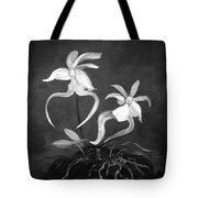 Ghost Orchids Tote Bag