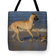 Giant And Tiny Dogs Tote Bag