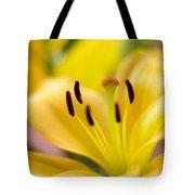 Glorious Lilies Tote Bag