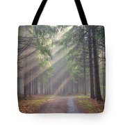God Beams - Coniferous Forest In Fog Tote Bag