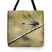 Golden Wings Tote Bag