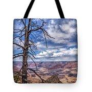 Grand Canyon National Park - South Rim Tote Bag