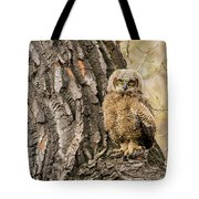 Great Horned Owlet  Tote Bag