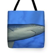 Grey Reef Shark Tote Bag