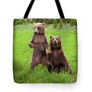 Grizzly Bear Arctos Ursus Tote Bag