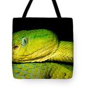 Guatemala Palm Pitviper Tote Bag