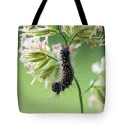 Gypsy Moth Caterpillar Tote Bag