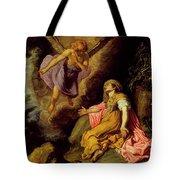 Hagar And The Angel Tote Bag