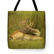 Having A Rest Tote Bag