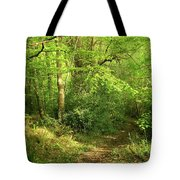 Hazelwood Co Sligo Ireland Tote Bag