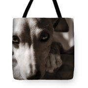 Heart You Italian Greyhound Tote Bag