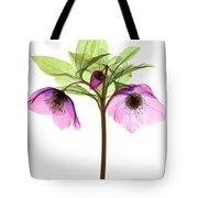 Hellebore Flowers, X-ray Tote Bag