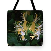 Honeysuckle Vine Tote Bag