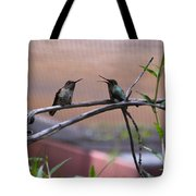 2 Hummingbirds Tote Bag