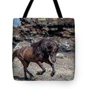 Icelandic Black Stallion, Iceland Tote Bag